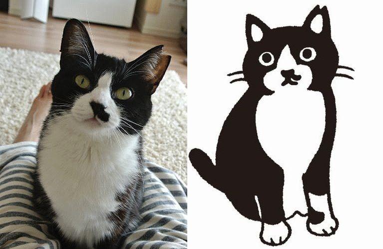 白黒の猫も 個性いろいろ イラストに描いてキャラクター化 Sippo シッポ