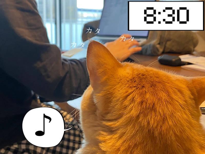 猫写真マンガ「ぐっぴーのたぷたぷ日記」2