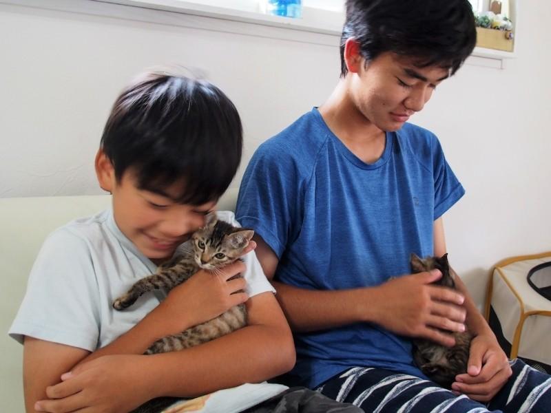 2人の男の子と2匹の猫