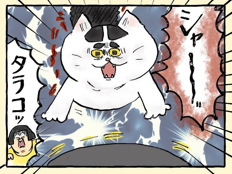 大盛のぞみ猫マンガ「やっぱ、猫じゃけぇ」3コマ目
