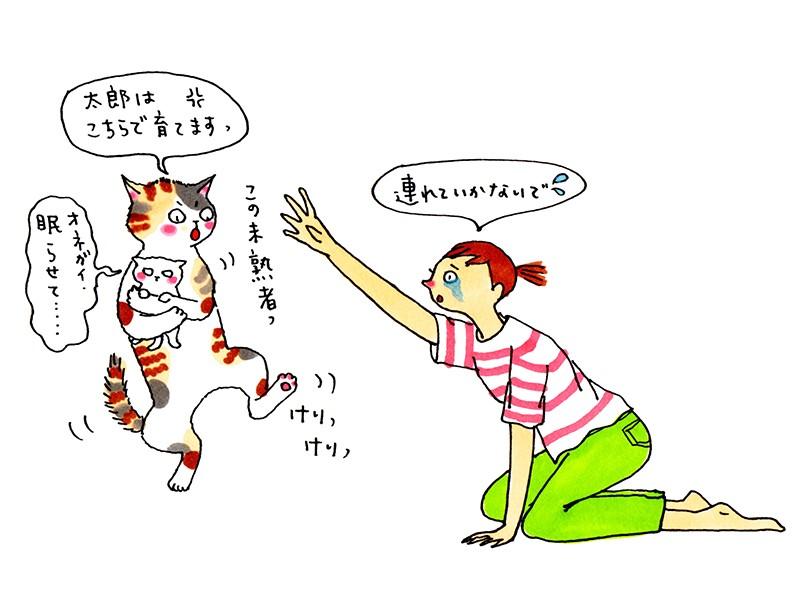 猫のイラスト©竹脇麻衣