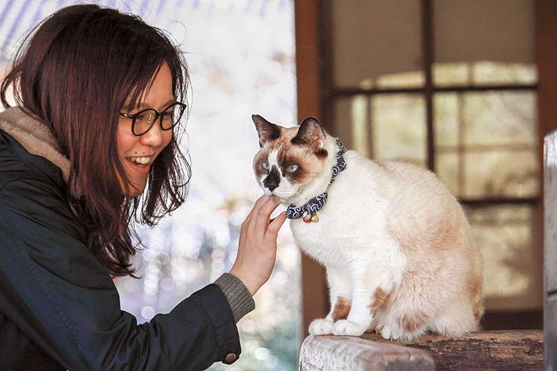 女性と嘉例川駅の観光大使猫「にゃん太郎」