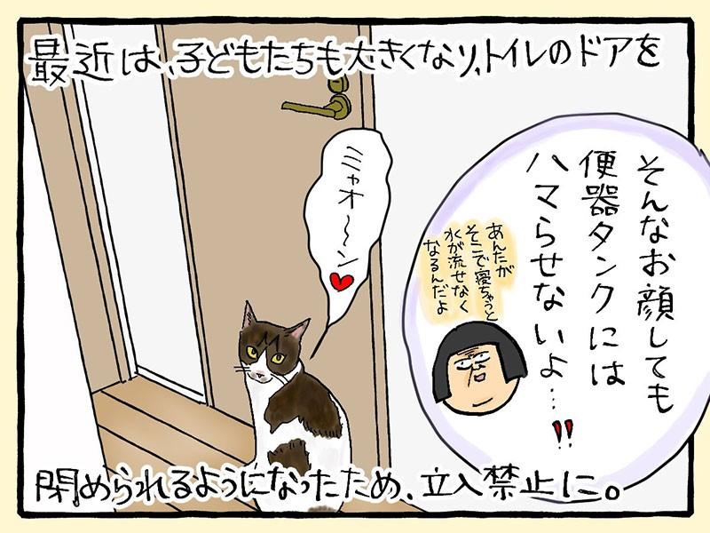 大盛のぞみ猫マンガ「やっぱ、猫じゃけぇ」2コマ目