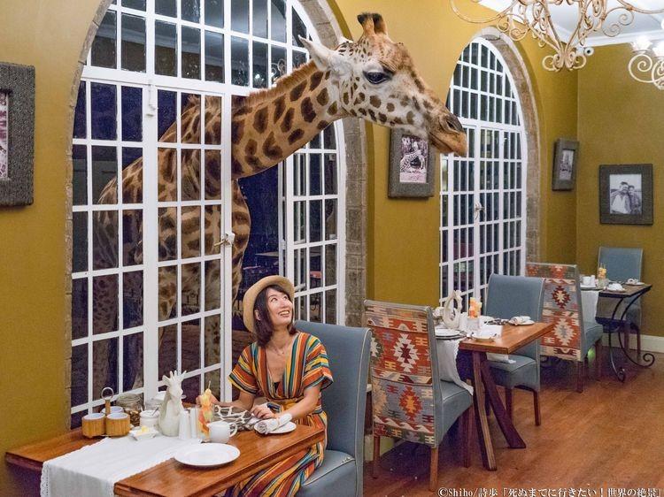 キリン レストラン