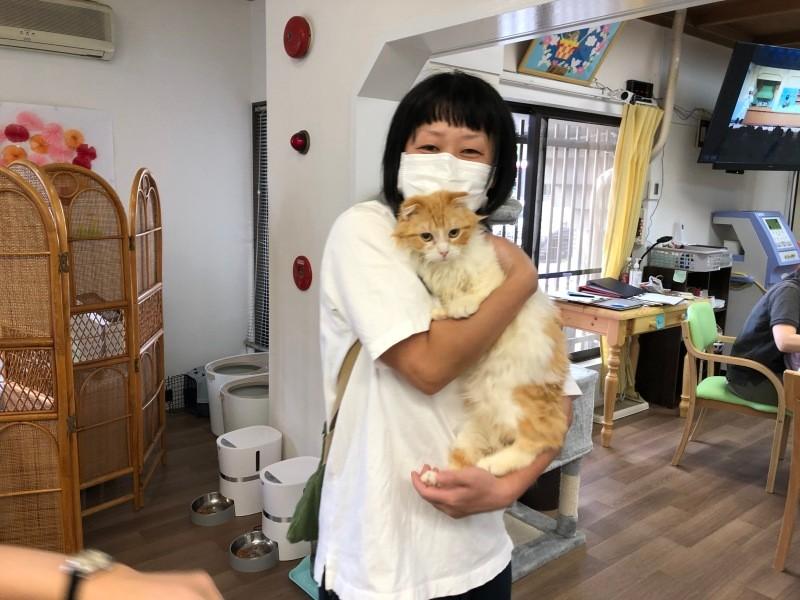猫を抱っこする女性