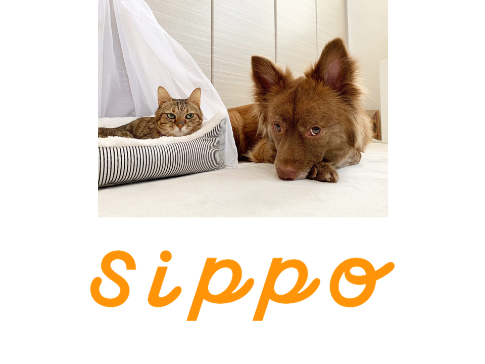 sippo