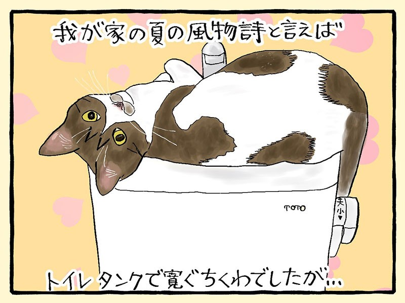 大盛のぞみ猫マンガ「やっぱ、猫じゃけぇ」1コマ目