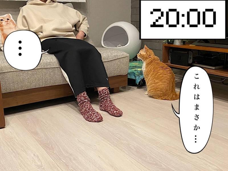 猫写真マンガ「ぐっぴーのたぷたぷ日記」5