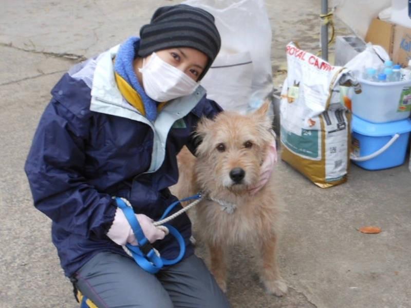 福島の被災犬と江口ともみさん