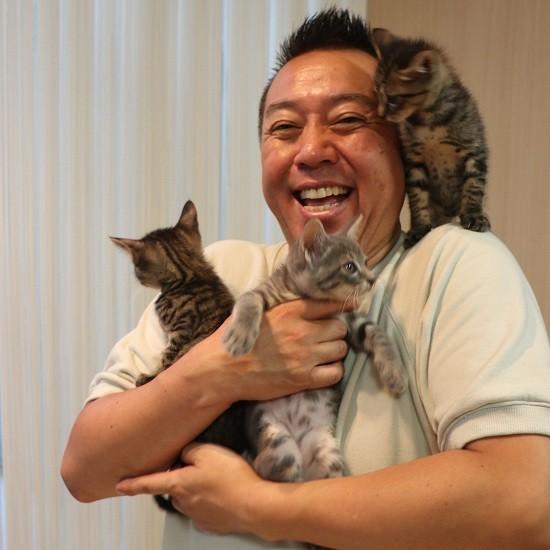 たい平さんと3匹の猫