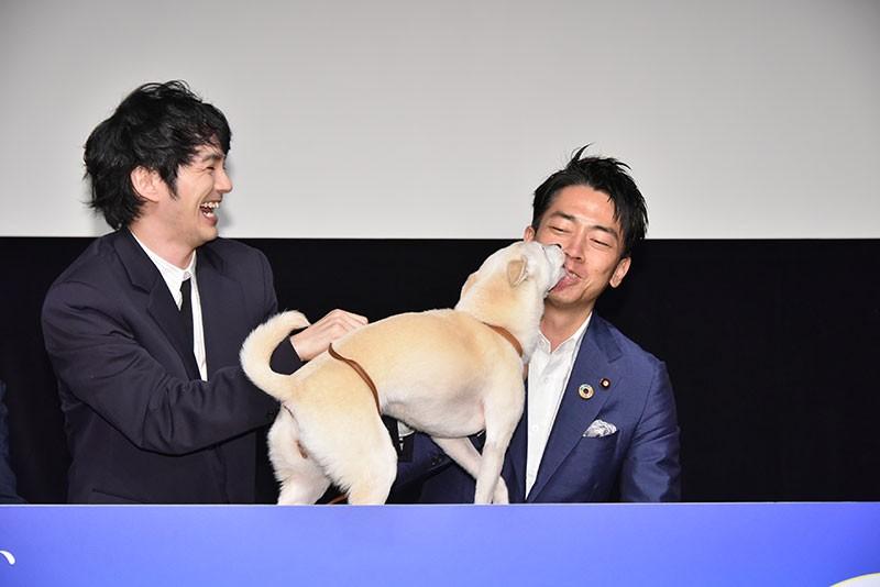 映画『犬部!』、主演の林遣都さんと、出演犬ちえちゃんになめまわされる小泉進次郎環境大臣