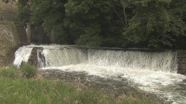 初夏の風物詩 満濃池で「ゆる抜き」 今年も規模縮小し実施 香川