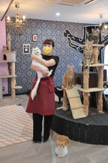 猫カフェ店主の伊藤さんと抱っこ大好き猫カール君
