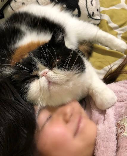 女の子に甘える猫「イクラ」