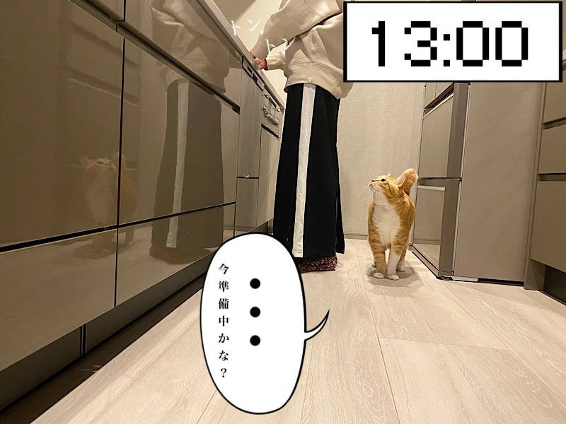 猫写真マンガ「ぐっぴーのたぷたぷ日記」3