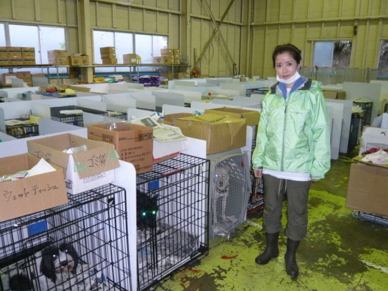 福島県三春の福島動物救援本部 第一シェルターの犬舎を訪れた江口ともみさん
