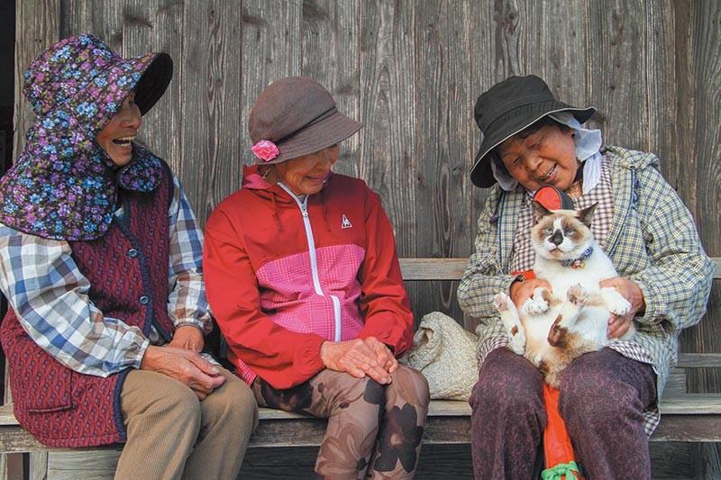 抱っこされる嘉例川駅の観光大使猫「にゃん太郎」