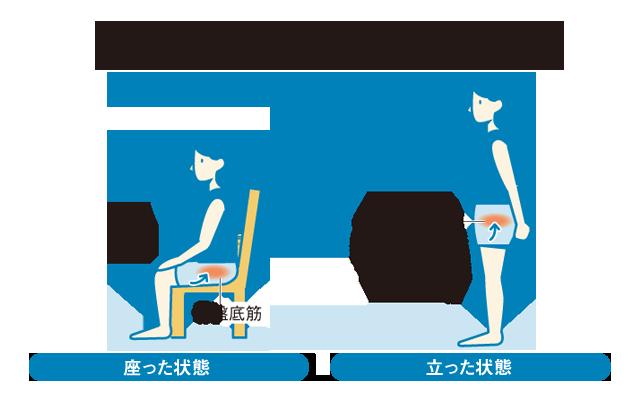 骨盤底筋トレーニングで尿漏れ改善、日常生活での体の使い方にも注意を