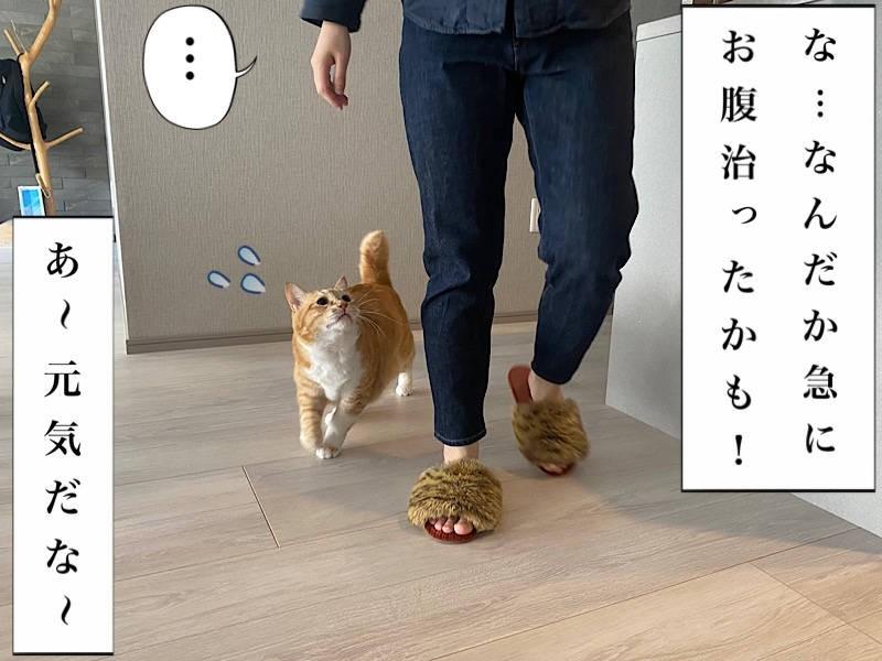 お太りさま猫ぐっぴー写真マンガ「ぐっぴーのたぷたぷ日記」5コマ目