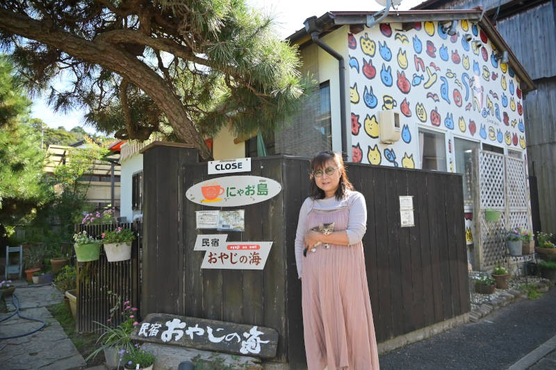民宿「おやじの海」と隣接する休業中の猫カフェには猫の絵