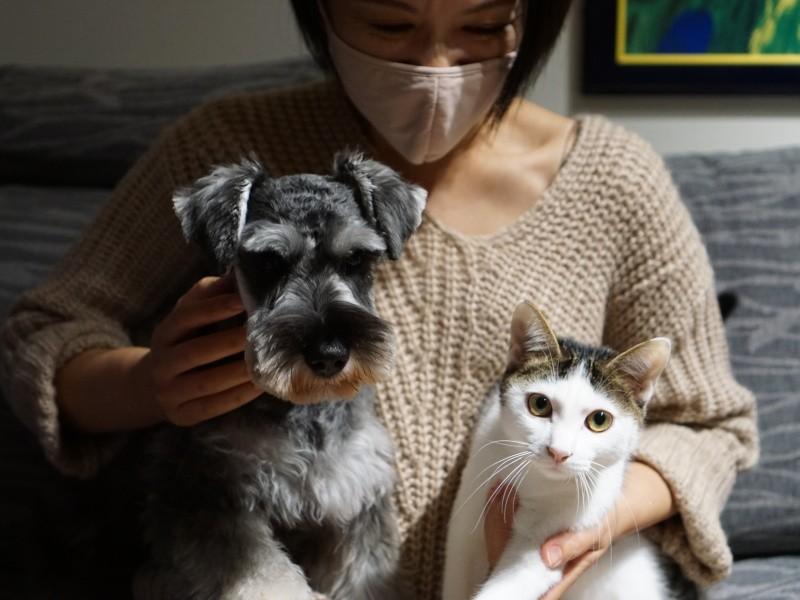 抱っこされる犬と猫