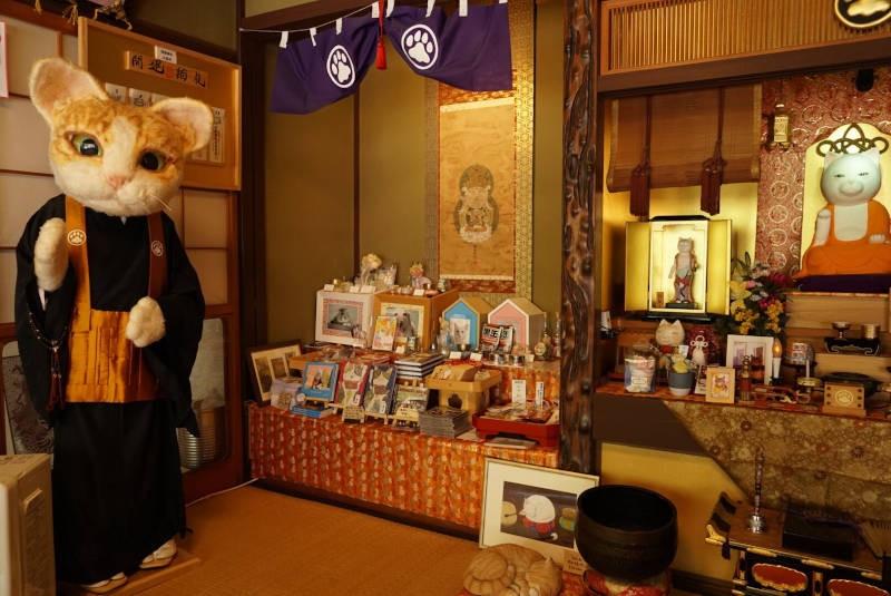 猫猫寺の猫住職