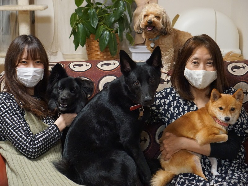 母と子と犬