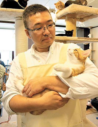 保護 猫 埼玉