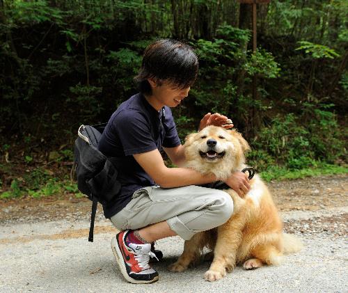 正しい犬の散歩 飼い主が前 犬は左 犬が来たら道の端へ Sippo シッポ